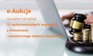 e-Aukcje